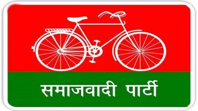 Samajwadi Party's strength