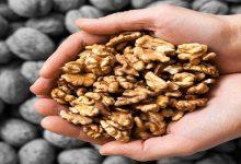benefit of walnuts