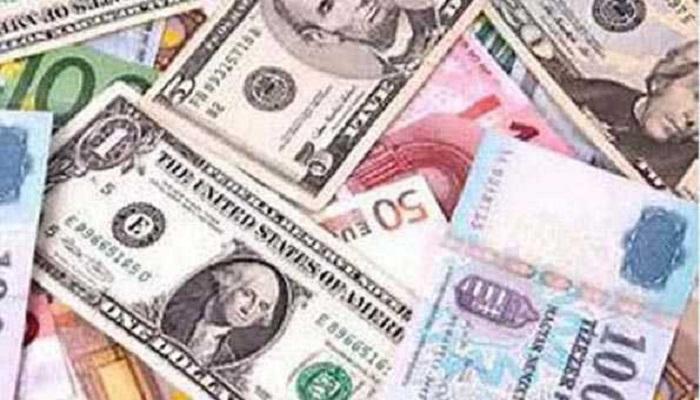 विदेशी मुद्रा भंडार घटा