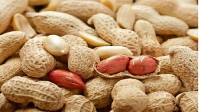 Soaked peanuts