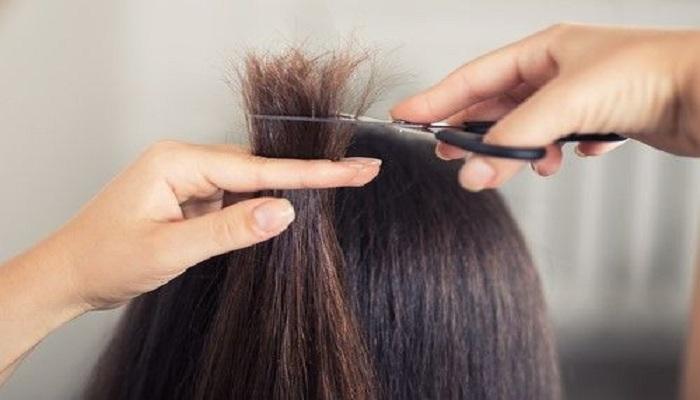 Home remedy for Split hair