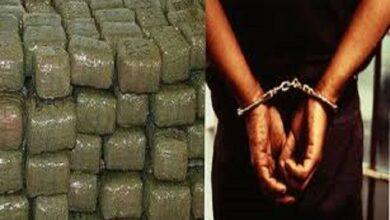 smugglers arrested