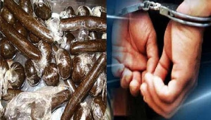 drug smuggler arrested