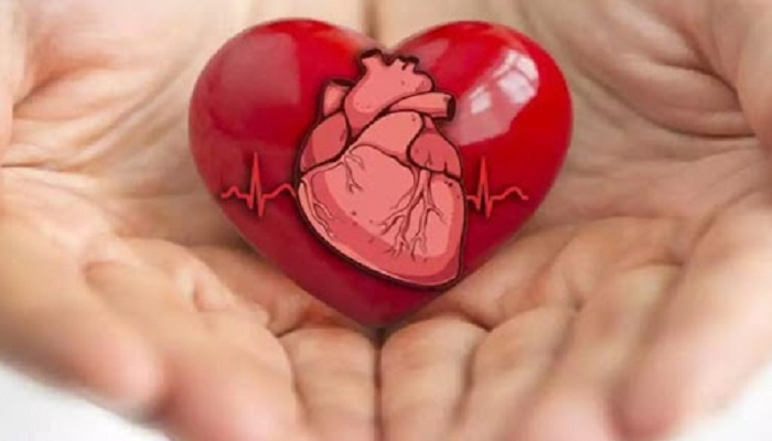 heart care tips