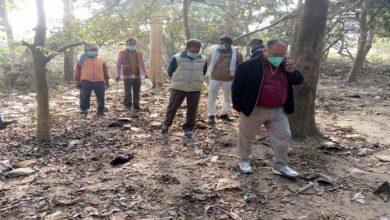 17 crows found dead in Barabanki