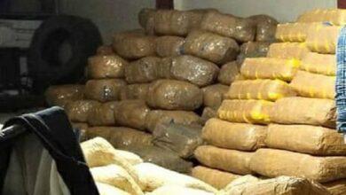 वाराणसी में पकड़ा गया पांच करोड़ का गांजा