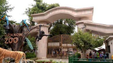 लखनऊ प्राणि उद्यान Lucknow Zoological Garden