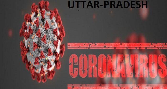corona in up