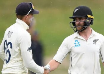 New Zealand declared their innings, set a target of 273 runs for England