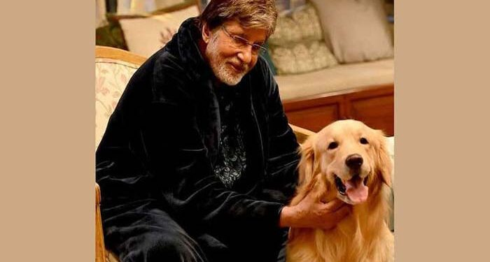 Big B is very happy with his new costar, shared pictures