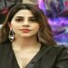 Bigg Boss contestant Nikki Tamboli will be seen on screen with another sizzling song