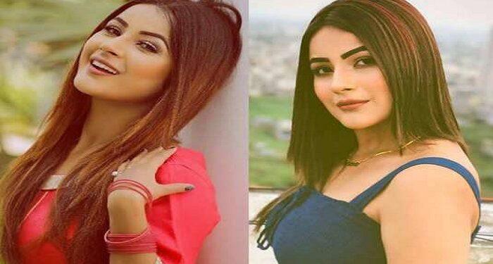 Only skinny girls get work in film industry: Shehnaaz Gill