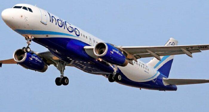 उड़ान भरने के दौरान इंडिगो के विमान से पक्षी टकराया