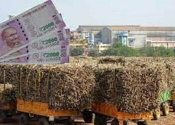 payment of sugarcane